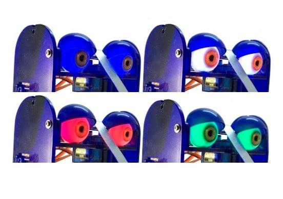 Kolorowe oczy Ohbot